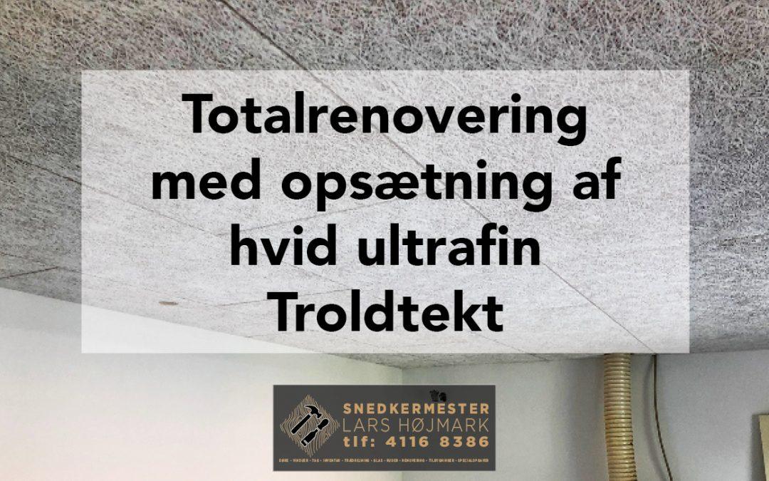 Totalrenovering med Troldtekt loft